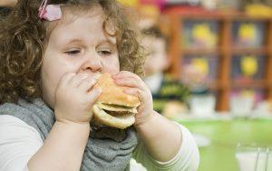 เมนูอาหาร เด็กอ้วน