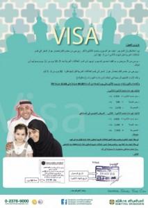 visa-213x300
