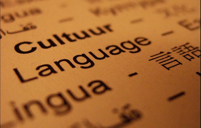 LanguageInte